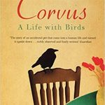 Corvus: a life with bird, cover